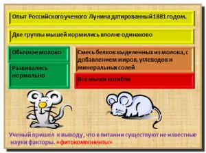 эксперемент с мышами